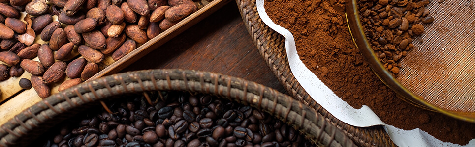 Tipos de café y tueste